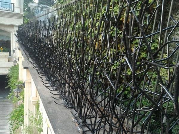 نمونه نصب شده حفاظ شاخ گوزنی جلوی حفاظ سرنیزه ای