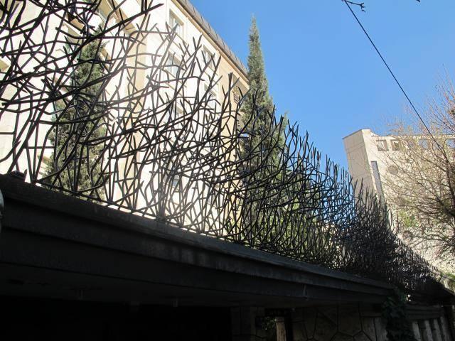 حفاظ شاخ گوزنی با تراکم زیاد